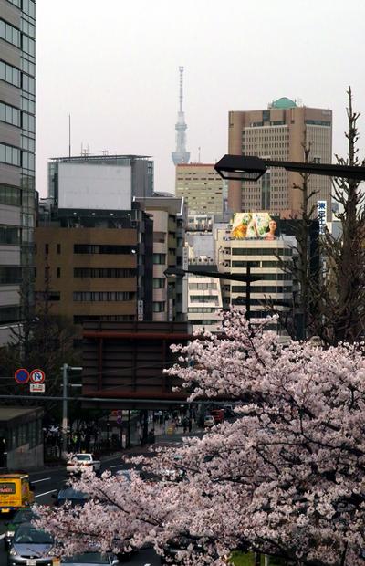 画像-022hodo-400x620.jpg