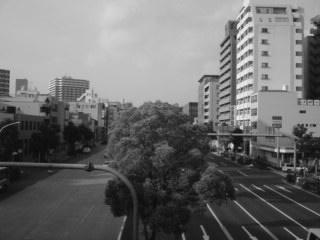 nagoya_hodokyo2.jpg